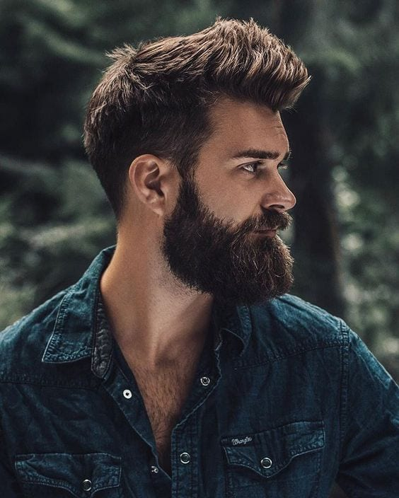long beard hair styles beard grooming guide grooming guide every should 4184 | beard styles 3