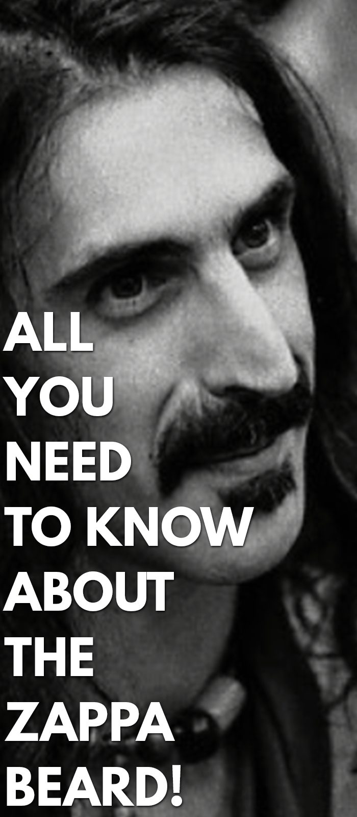 All-You-Need-To-Know-About-The-Zappa-Beard!.
