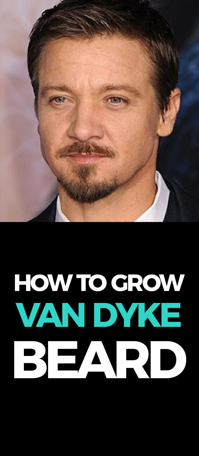 Perfect Van Dyke Beard!