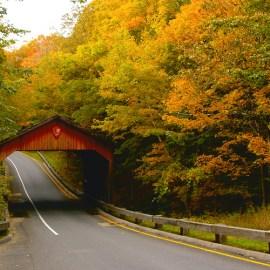 Wanderlust: Michigan's Gold Coast