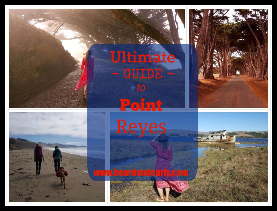 Ultimate Guide to Point Reyes, California. Check out more at www.beardandcurly.com