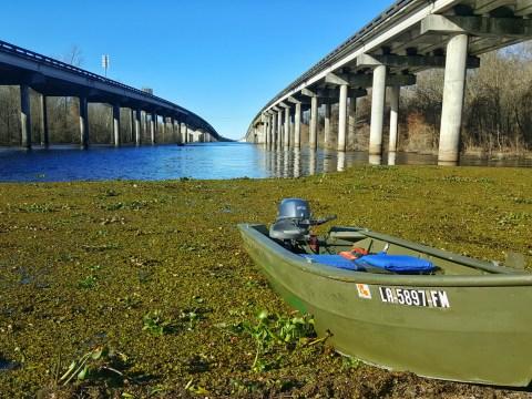 Atchafalaya Basin, Swamp, Tour, Louisiana