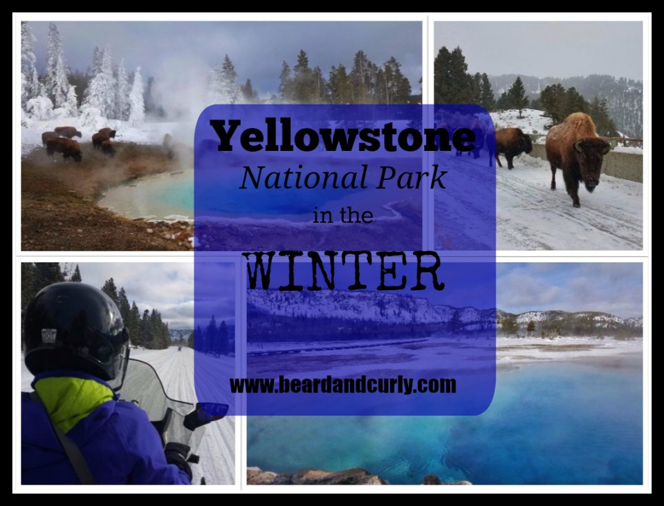 Yellowstone in the Winter. Check out more at www.beardandcurly.com