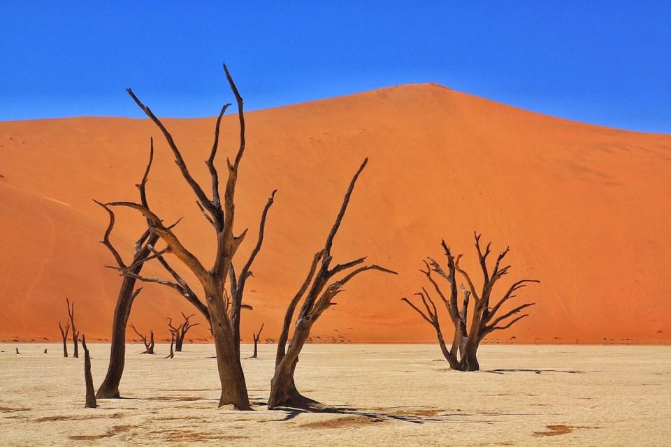 Deadvlei Sossusvlei Sesriem Naukluft National Park Namibia