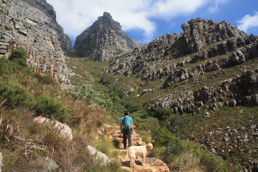 Platteklip Gorge, Table Mountain, Cape Town Hiking, South Africa, Western Cape