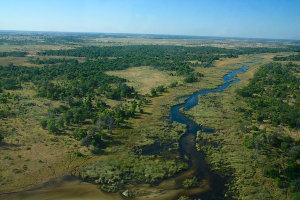 Botswana, Safari, Zebra, Elephant, Leopard, Moremi, Chobe, Okavango Delta, Moan, Kasane