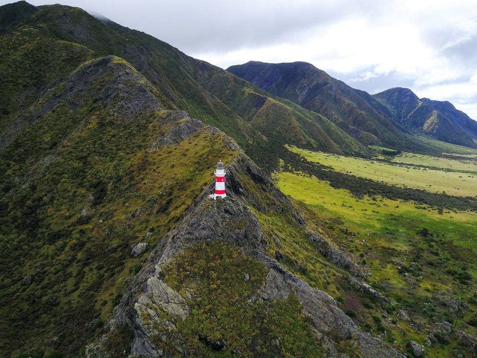 Ultimate Guide to Backpacking in New Zealand. Top places to see in New Zealand. Blog Post. Goats on the Road. See more at www.beardandcurly.com