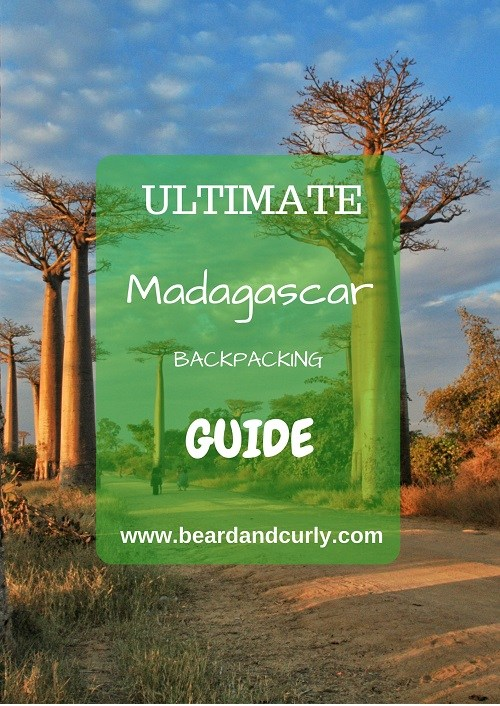 Madagascar Backpacking Guide, Ultimate Backpacking Guide to Madagascar, Madagascar Tourism, Travel to Madagascar, Visit Madagascar, When to Go to Madagascar, What to see in Madagascar, How Do I Get To Madagascar, avenue of baobabs, tsingy, rainforest, lemurs, africa, beardandcurly.com