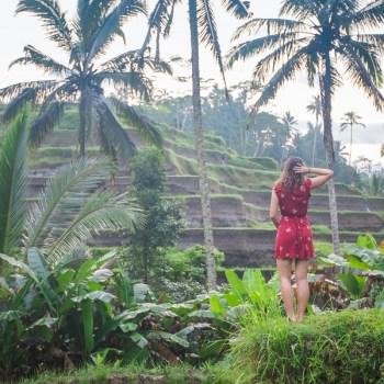 Things to Do in Ubud, Top Things to Do in Ubud, Top Things to do in Bali, Best Things to do in Ubud, Best Attractions in Ubud, Must-do things in Ubud, 10 Things You Must Do On Your Next Trip to Ubud (Bali), Cepud Tekung, Tibumana, Kanto Lampo, Temple, Temples, Balinese, Hindu, Campuhan Ridge Trail, Locovore, Vegan, Raw, Food, Juice, Tirta Gangga, Uluwatu, Nusa Penida, Kelingking beach, Broken Beach, Angel