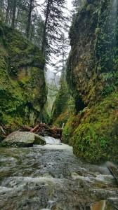 Oneanta Gorge