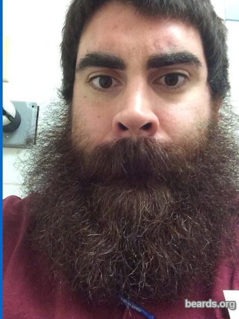 Dan, today's beard photo 1
