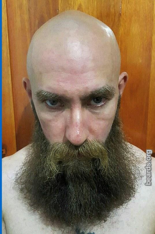 Julio's beard photo 2