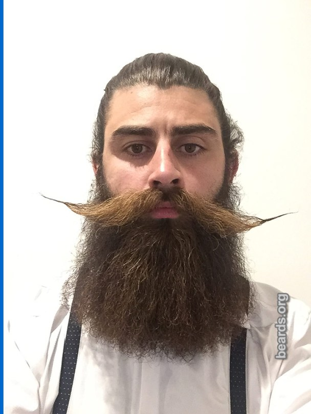 Kurtis, beard photo 2