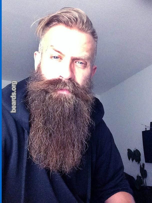 Andy, beard photo 3