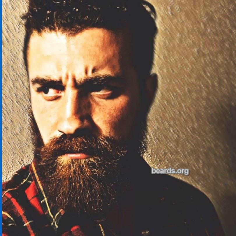 Sam, beard photo 5