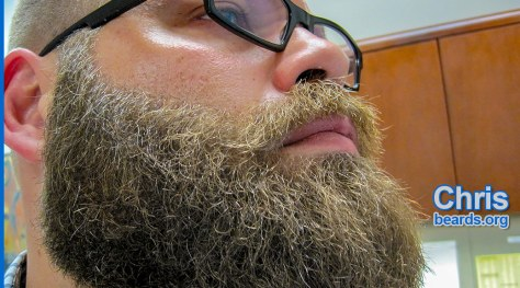Chris' fierce beard, featured image 1