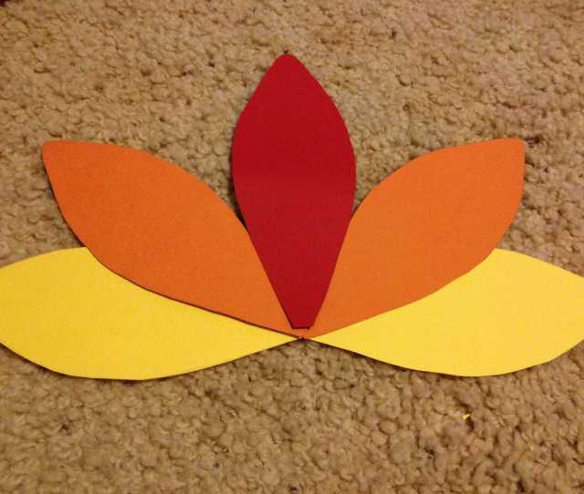 Feathers Arranged In A Fan Pattern