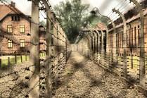 Auschwitz_0562