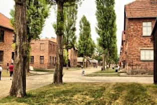 Auschwitz_0629