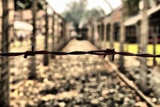 Auschwitz_0680