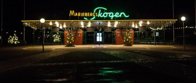 mariebergsskogen-2649