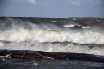 180810-171651-waves-1D8A6524