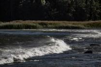 180810-180007-waves-1D8A7866