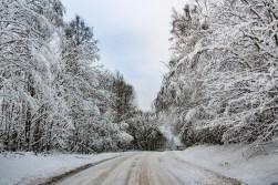 210114-130846-winter-road-IMG_6023