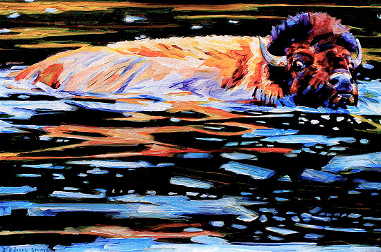 Swimming the Madison by Debbie Edgers Sturges