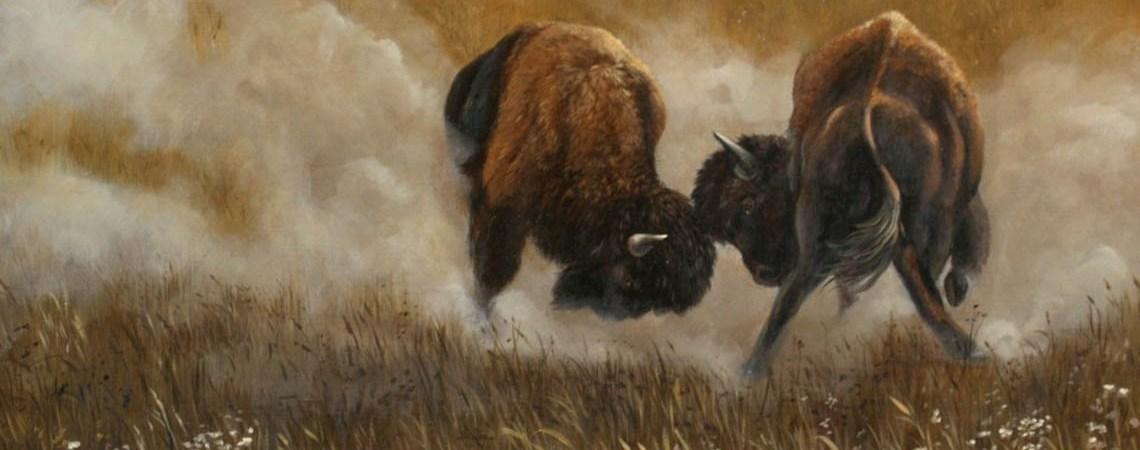 Clash Of The Bison by Carol Heiman-Greene