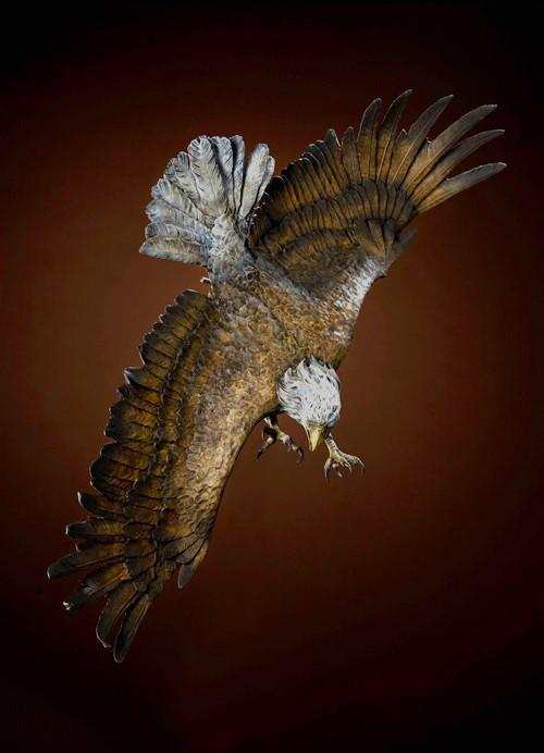 Wings of Fury by Jerry McKeller