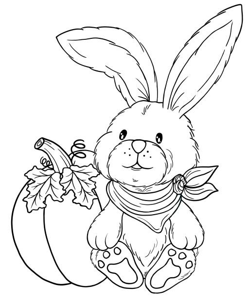 Fall-Bunny-BW