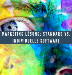 Marketing Lösung_ Standard vs. individuelle Software