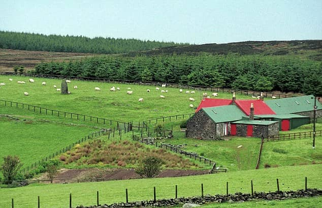 High Park Farm, Campbeltown, Scotland