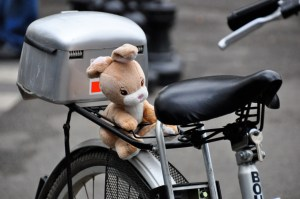 © Beatrice Otto bike with teddy close up