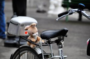 © Beatrice Otto bike with teddy