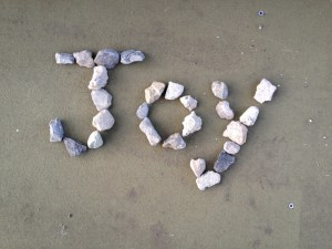 joy in pebbles