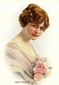 Rose O'Killarney
