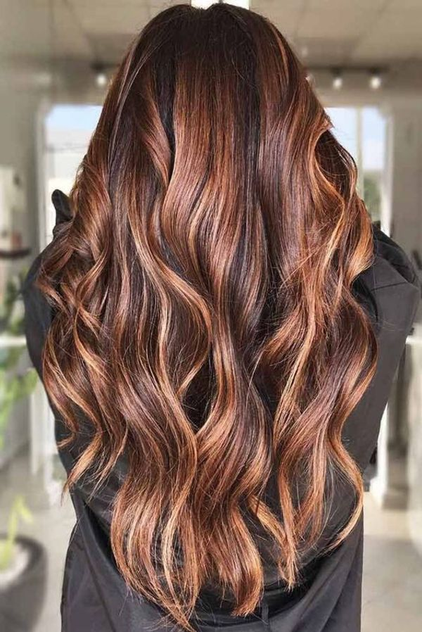 Chestnut Hair Highlights