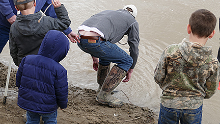 Releasing the paddlefish back in to the Yellowstone River.