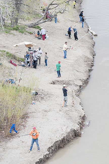 Fisherman line the shore of the Yellowstone River at Sundheim Park east of Fairview.