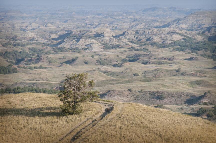 The South Unit is the larger of the two units of the Theodore Roosevelt National Park.