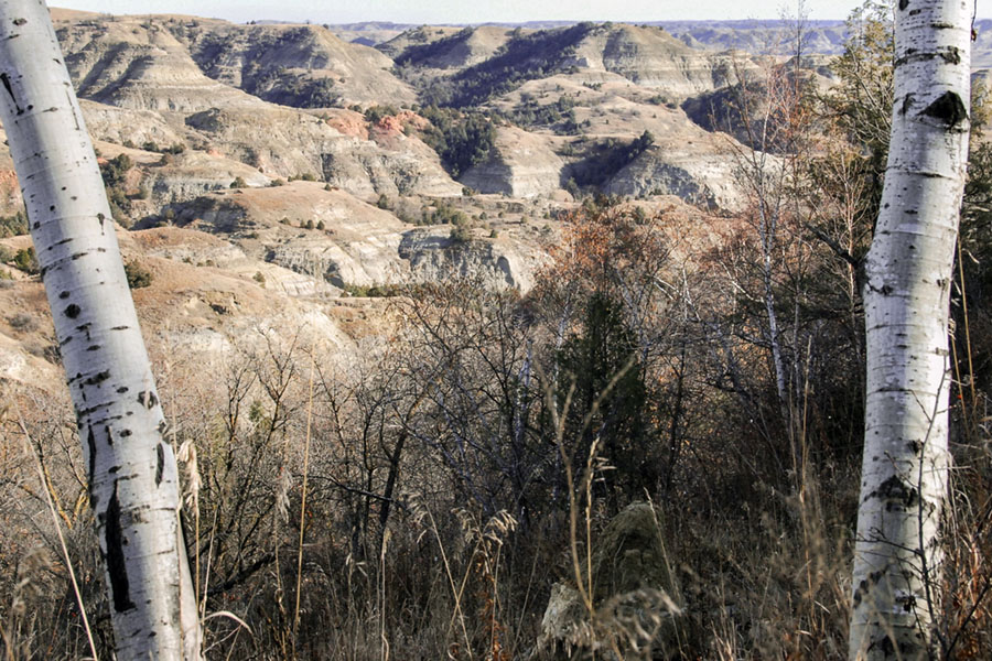 3 reasons now is the best time to hike the most rugged region of the state – The Little Missouri State Park (even if you're not a hiker)