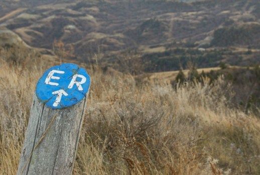 A blue sign post points visitors to the continuation of the trail.