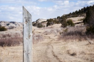 A Bennett Creek Trail marker.