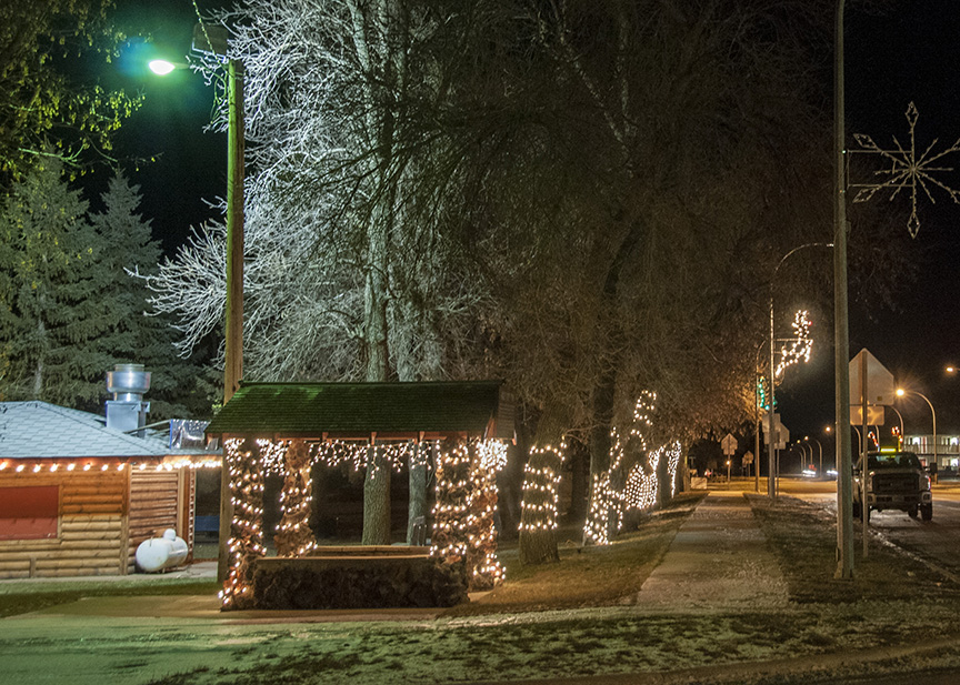 Alexander's park is lit up for Christmas.