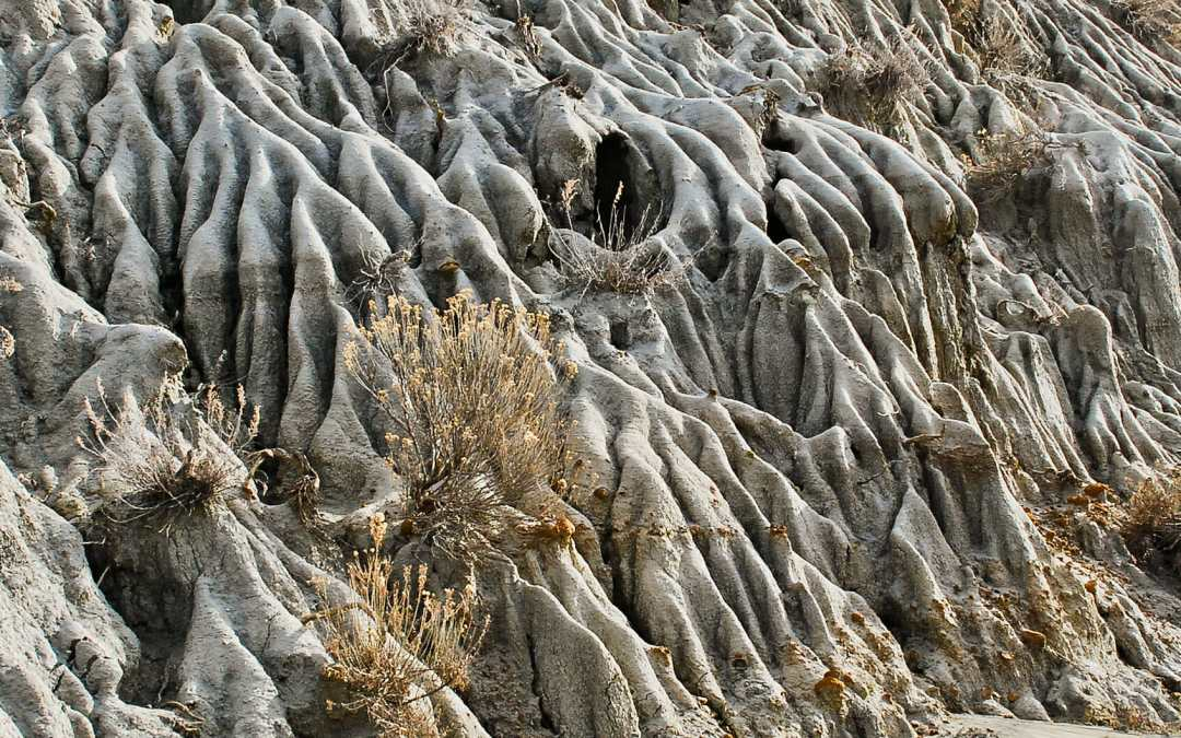 See Millions of Rough Years in Badlands Appearance — just look