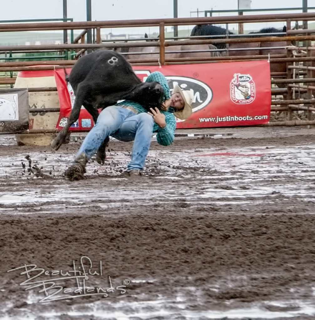 steer wrestling Killdeer Mountain Roundup Rodeo