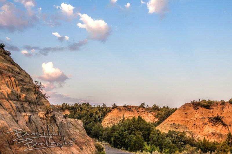 evergreen Theodore Roosevelt National Park, golden hour,