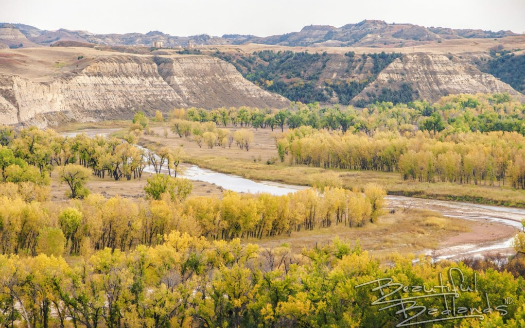North Dakota Badlands, yellow, elkhorn ranch, Theodore Roosevelt